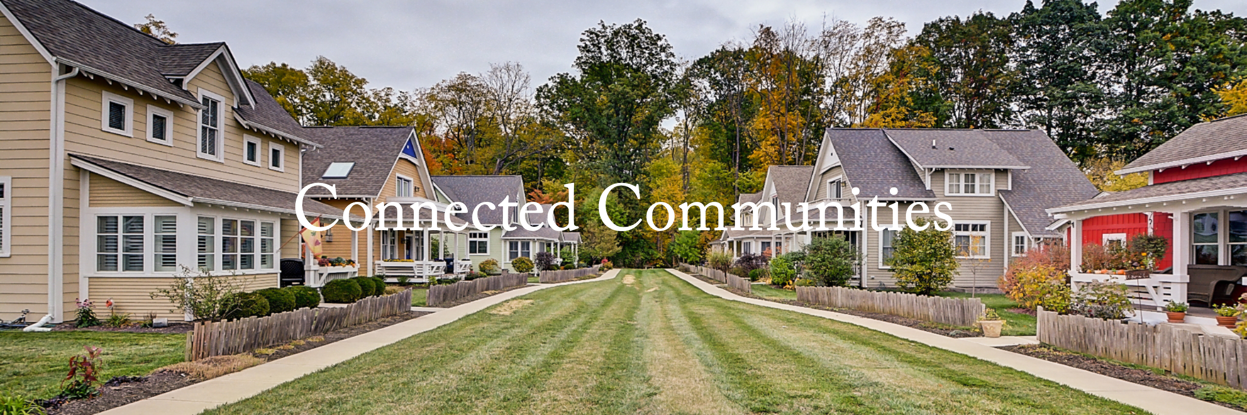 Land Development & Building New Construction Cottage Communities